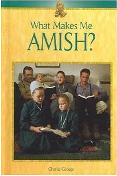 What Makes Me Amish? by Charles George