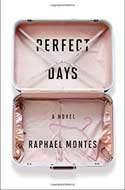 Discounted copies of Perfect Days by Raphael Montes