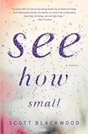 Discounted copies of See How Small by Scott Blackwood