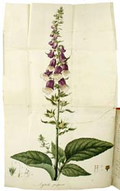 An Account of the Foxglove and Some of its Medical Uses by William Withering