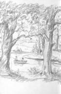 Pencil drawing by Tasha Tudor