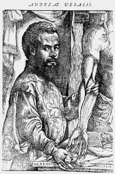 16th Century physician Andreas Vesalius