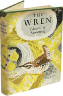 The Wren by Edward A Armstrong (1955)