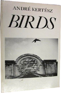 Birds by Andre Kertesz