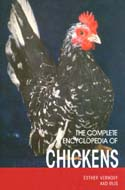 The Complete Encyclopedia of Chickens by Esther Verhoef-Verhallen and Aad Rijs