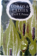 Lords & Ladies by Cecil T. Prime