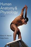 Human Anatomy and Physiology by Elaine N. Marieb, Katja Hoehn 0805395911