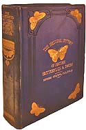 An Illustrated Natural History of Butterflies and Moths by Edward Newman