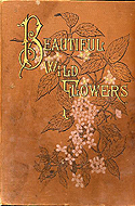 Beautiful Wild Flowers of America by Rev. A.B. Hervey