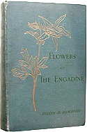 Flowers of the Engadine: Drawn From Nature by Evelyn Dawsonne Heathcote