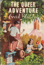 The Queer Adventure by Enid Blyton