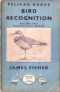 Bird Recognition: Sea-Birds and Waders (1947) by James Fisher