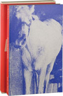 My Pretty Pony by Stephen King with art by Barbara Kruger
