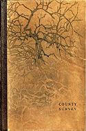 County Survey by James Armstrong and Ben Mitchell